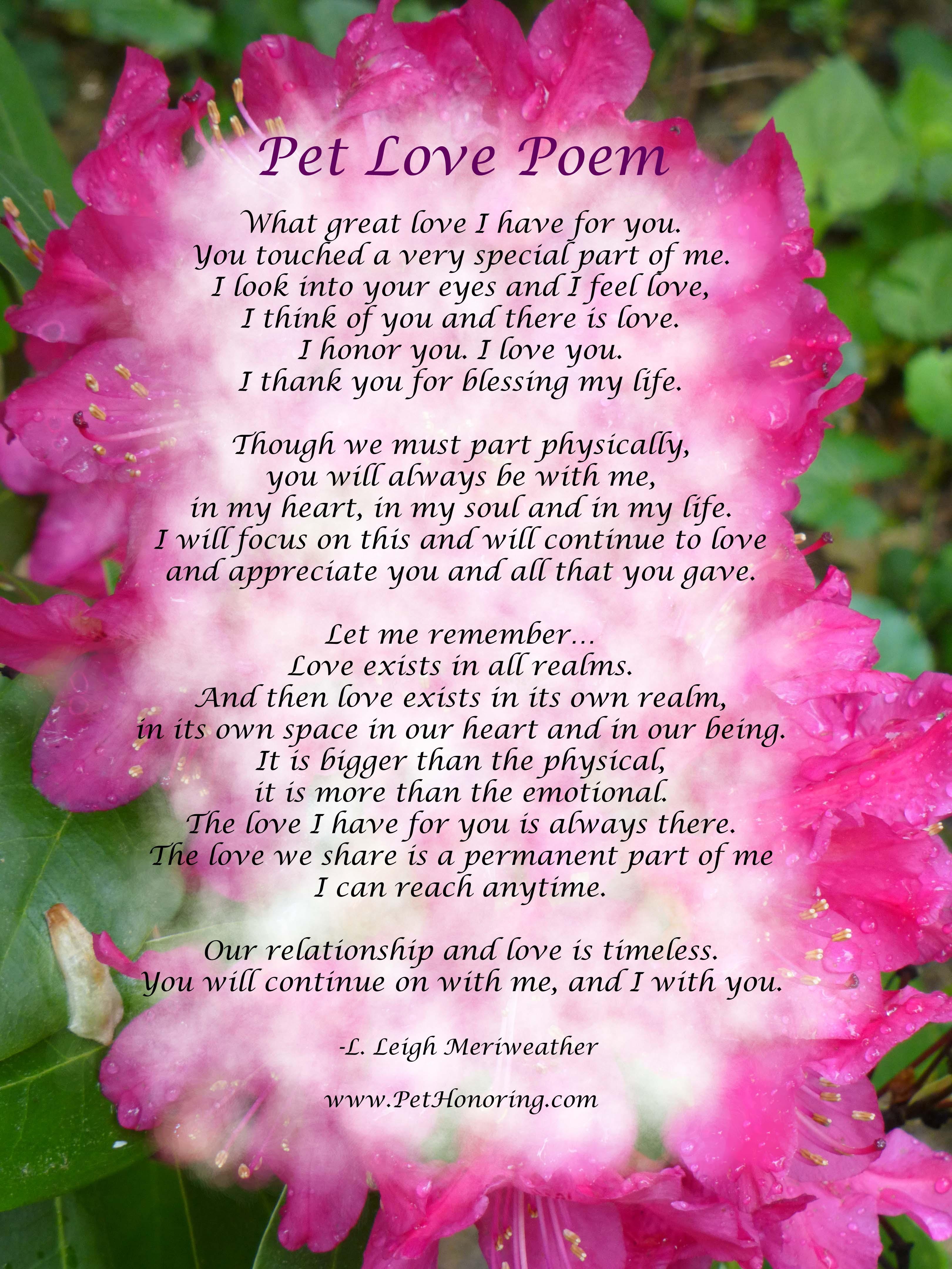 Pet Love Poem Pet Honoring Llc
