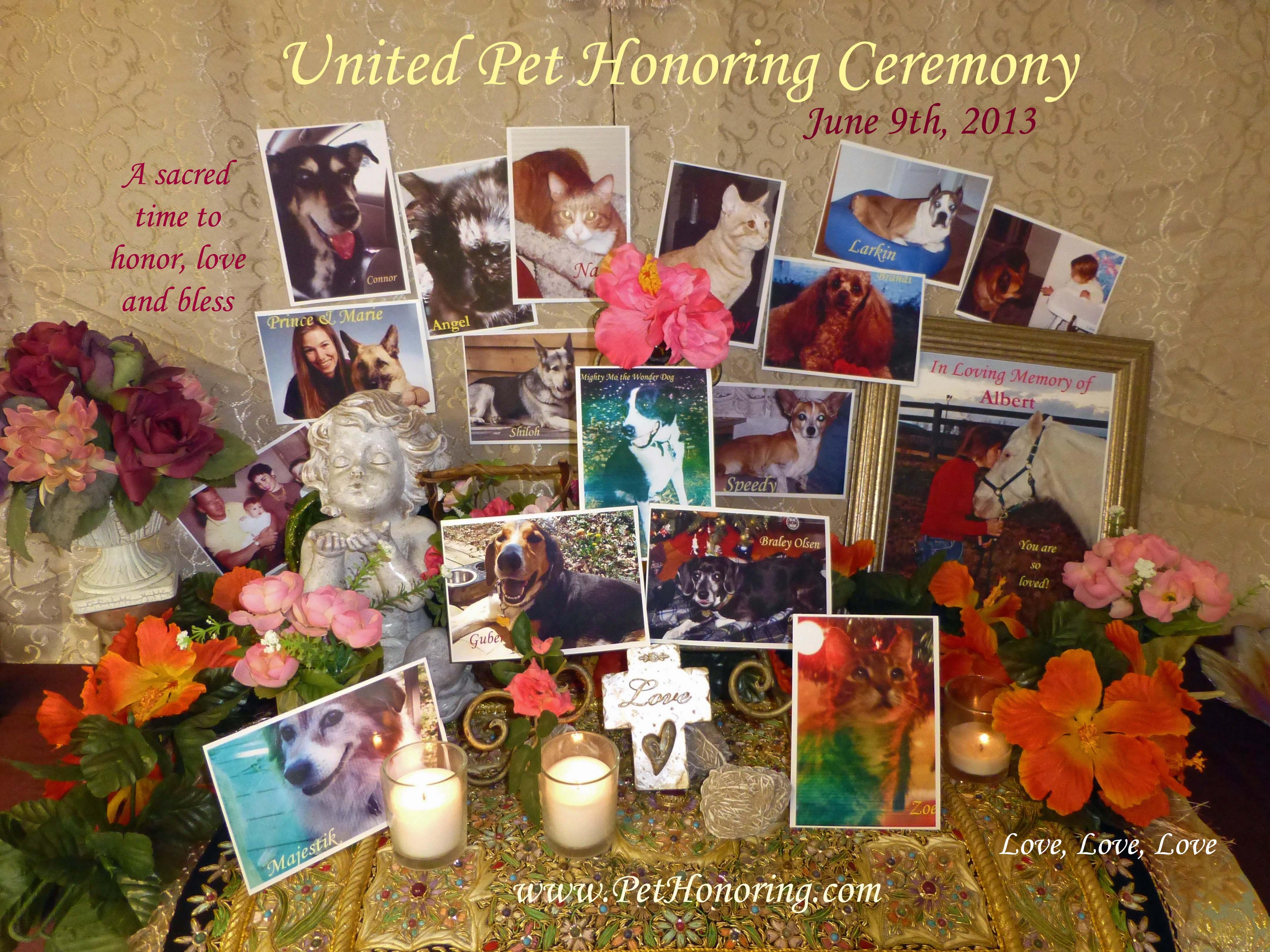 united pet honoring june 9 2013 pet honoring llc